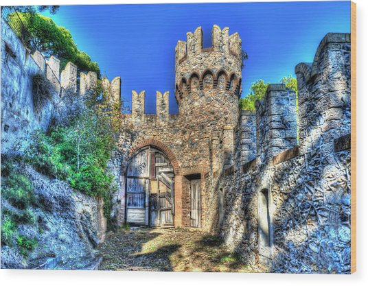 The Senator Castle - Il Castello Del Senatore Wood Print