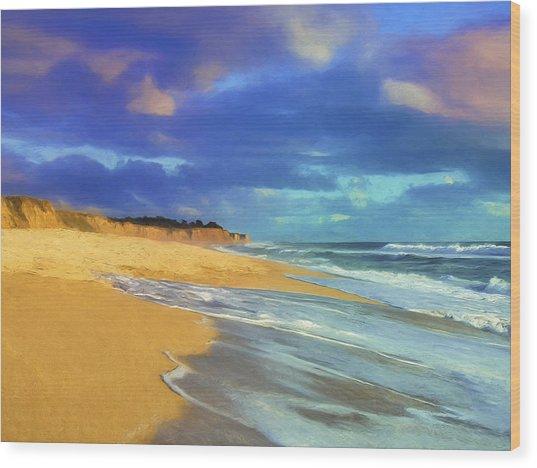 The Shoreline At Half Moon Bay Wood Print