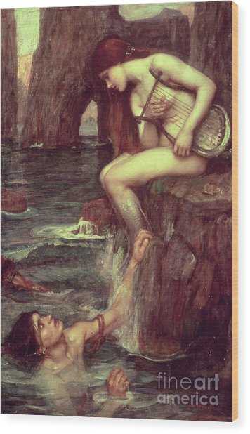 The Siren Wood Print