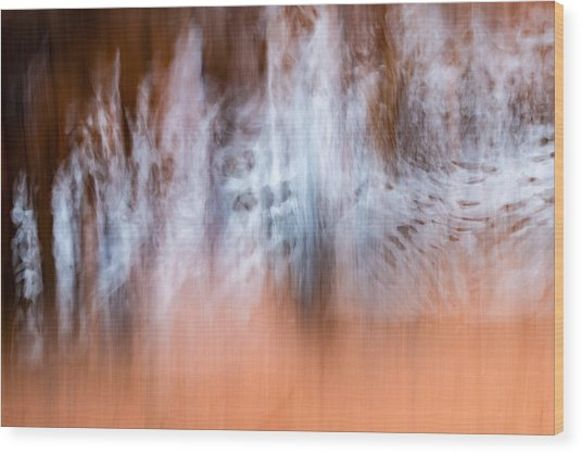 Wood Print featuring the photograph The Skin And Bones Of Water by Deborah Hughes