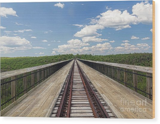 The Skywalk Wood Print