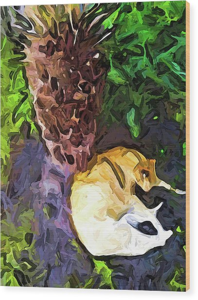 The Sleeping Cat And The Dead Tree Fern Wood Print