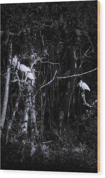 The Sleeping Quaters Wood Print