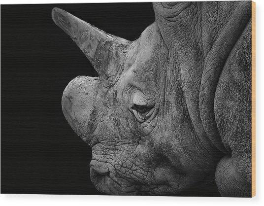 The Sleepy Rhino Wood Print