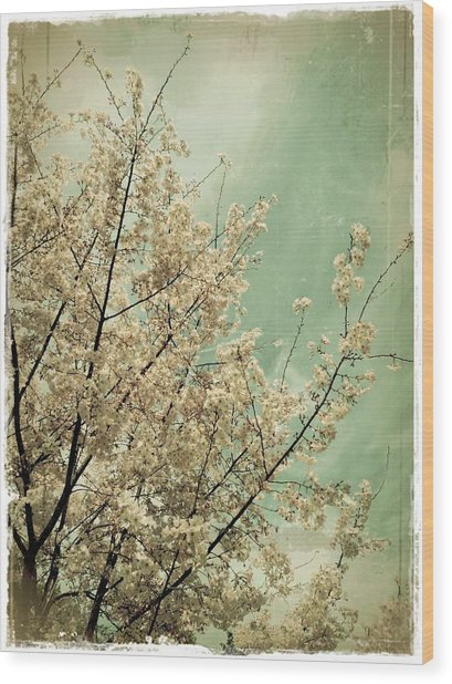 The Softness Of Spring Wood Print