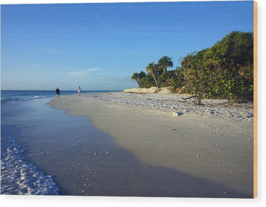 The South End Of Barefoot Beach In Naples, Fl Wood Print