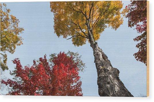 The Space Between Wood Print