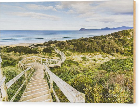 The Spit Lookout Wood Print