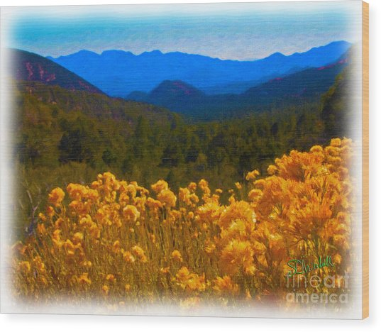 The Spring Mountains Wood Print