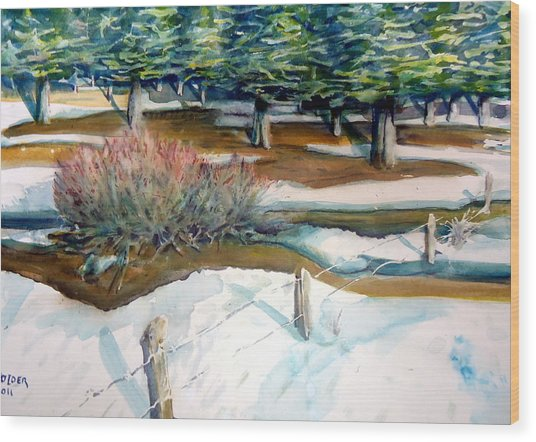 The Spring Thaw Wood Print