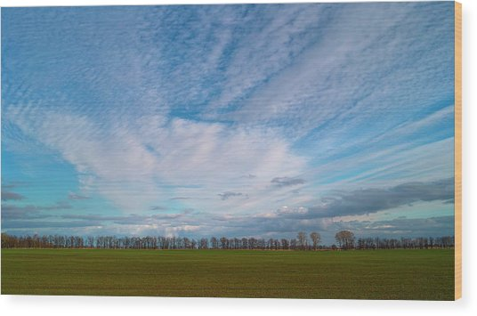 Wood Print featuring the photograph The Springtime Sky. Horytsya, 2010. by Andriy Maykovskyi