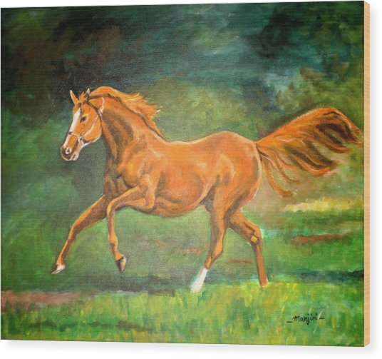 The Stallion-horse Art Painting  Wood Print
