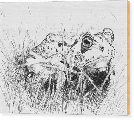 The Stalwart Old Toad Wood Print