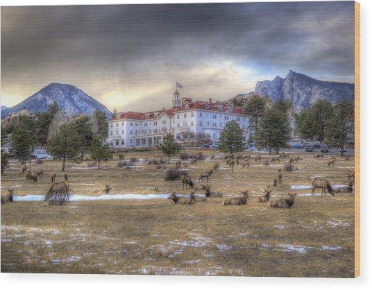 The Stanley With Elk Wood Print
