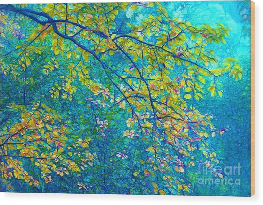 The Star Of The Forest - 773 Wood Print