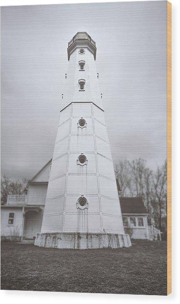 The Steel Tower Wood Print