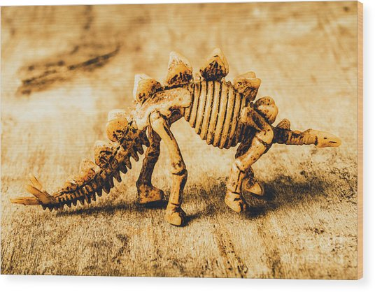 The Stegosaurus Art In Form Wood Print