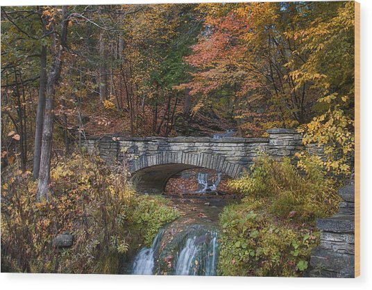 The Stone Bridge Wood Print