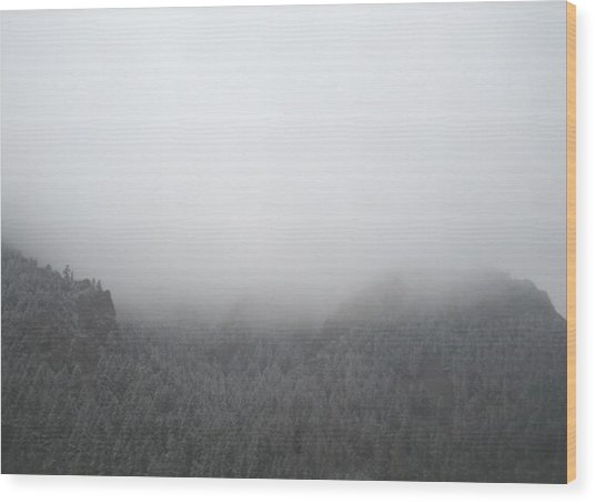 The Storm Is Coming Wood Print by Cassandra Wessels