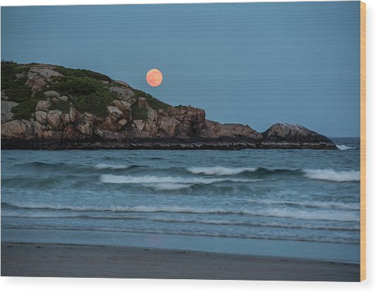 The Strawberry Moon Rising Over Good Harbor Beach Gloucester Ma Island Wood Print