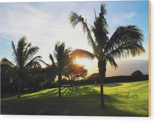 The Sun Rising Behind Haleakala Wood Print