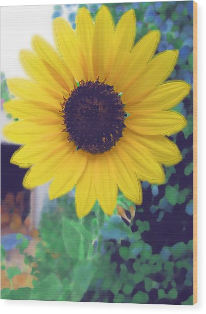 The Sunflower Wood Print by Chuck Shafer