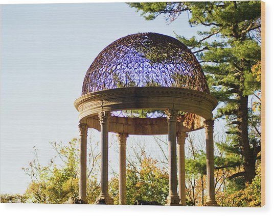 The Sunny Dome  Wood Print