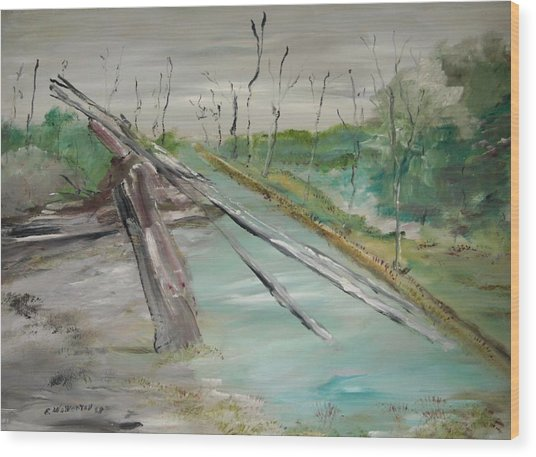The Swamp Wood Print by Edward Wolverton