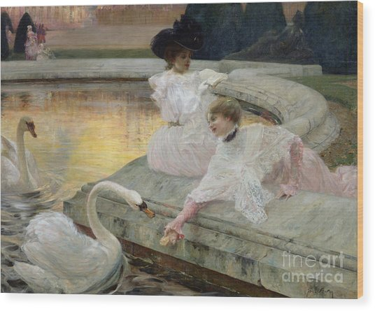 The Swans Wood Print