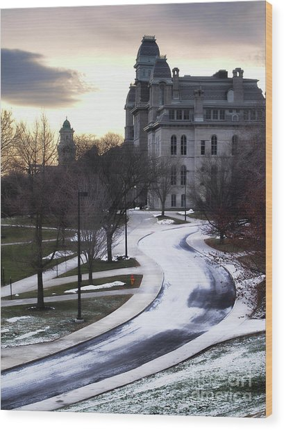 The Syracuse University Hall Of Languages Wood Print by Debra Millet