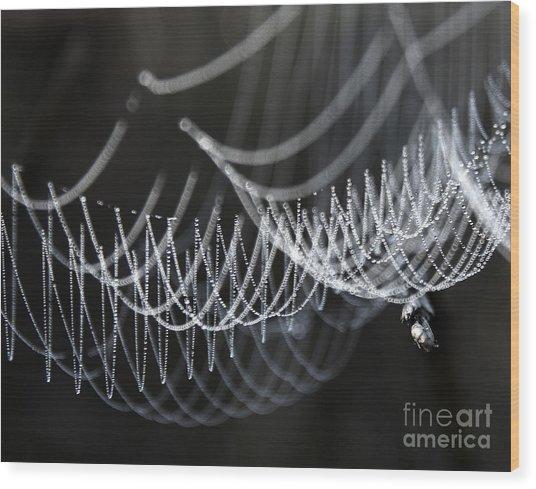 The Tangled Webs We Weave Wood Print