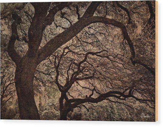 The Tango II Wood Print by Christine Hauber