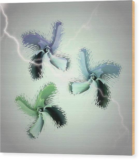 The Thunderbolt Dance Of Rose Butterflies - 4 Wood Print by Jacqueline Migell