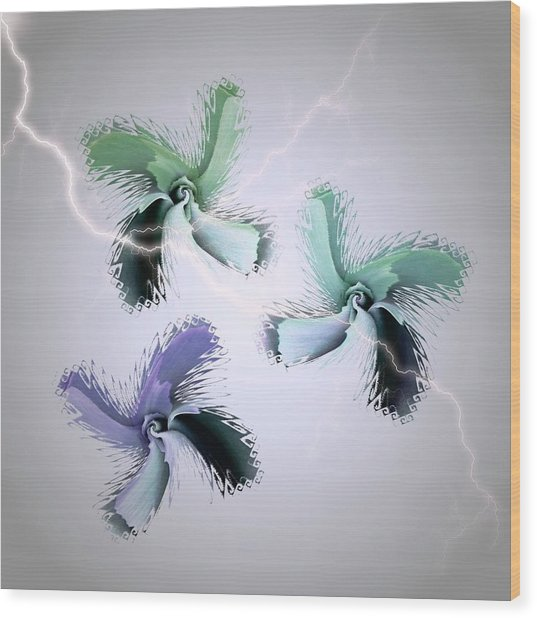 The Thunderbolt Dance Of Rose Butterflies - 5 Wood Print by Jacqueline Migell