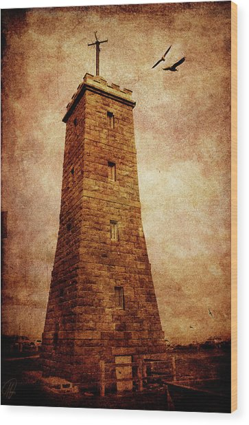 The Timeball Tower Wood Print
