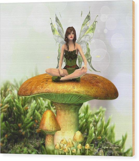 The Toadstool Fairy Wood Print