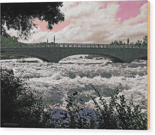 The Torrent Above Niagara Wood Print by Garth Glazier