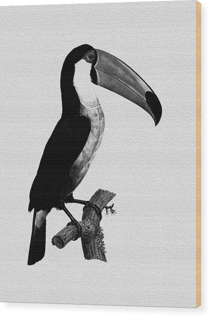 The Toucan Wood Print
