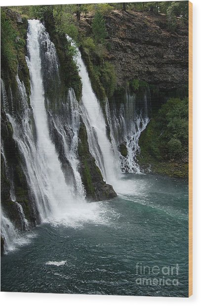 The Tranquility Of Waterfalls Wood Print by Stephanie  H Johnson