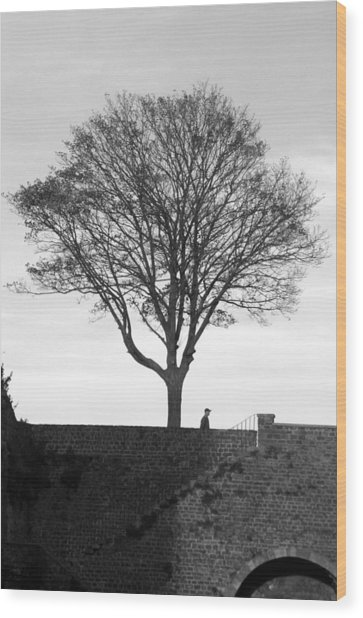 The Tree Wood Print by Jez C Self