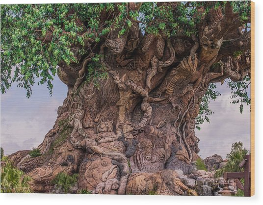 The Tree Of Life Close Wood Print