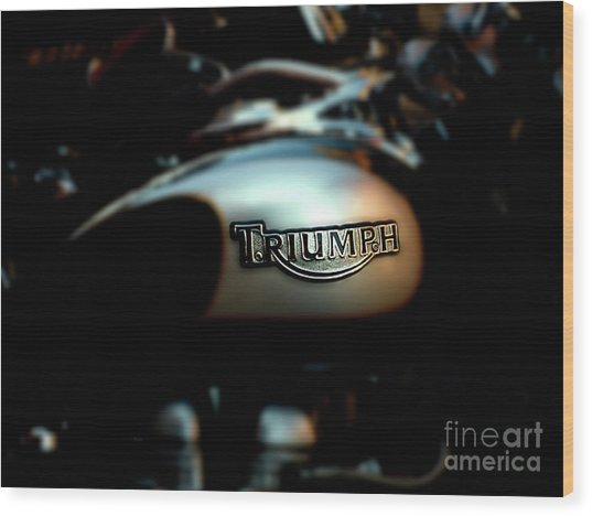 The Triumph Wood Print by Steven Digman