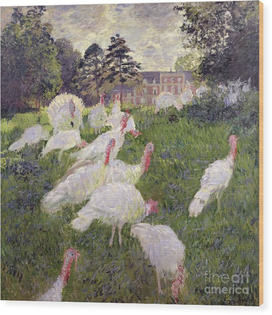 The Turkeys At The Chateau De Rottembourg Wood Print