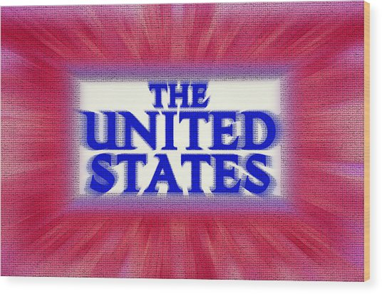 The United States Sign Wood Print by Steve Ohlsen