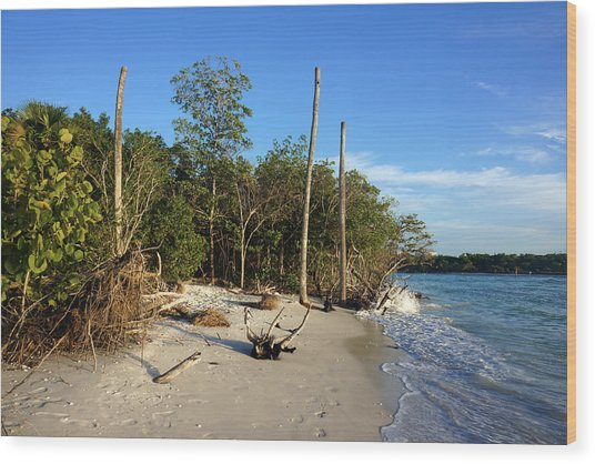 The Unspoiled Beauty Of Barefoot Beach In Naples - Landscape Wood Print