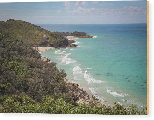 The View From The Cape Wood Print
