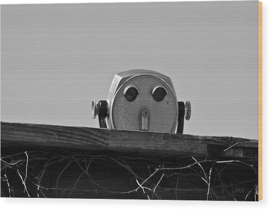 The Viewer No. 1 Wood Print