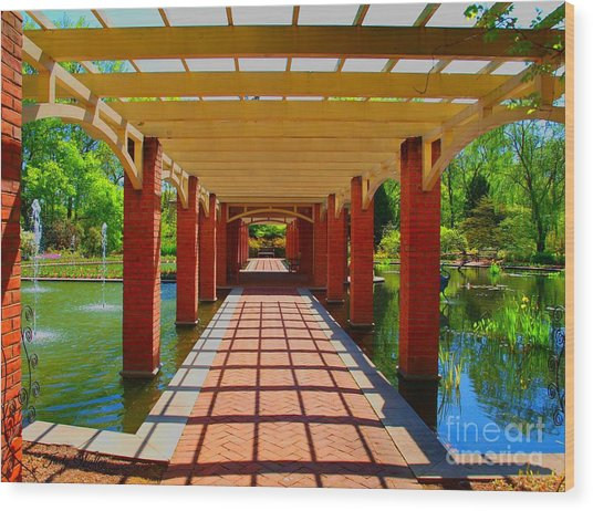 The Walkway Wood Print by Judy  Waller