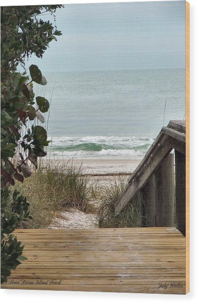 The Walkway To The Beach Wood Print by Judy  Waller