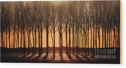 The Walnut Grove Wood Print